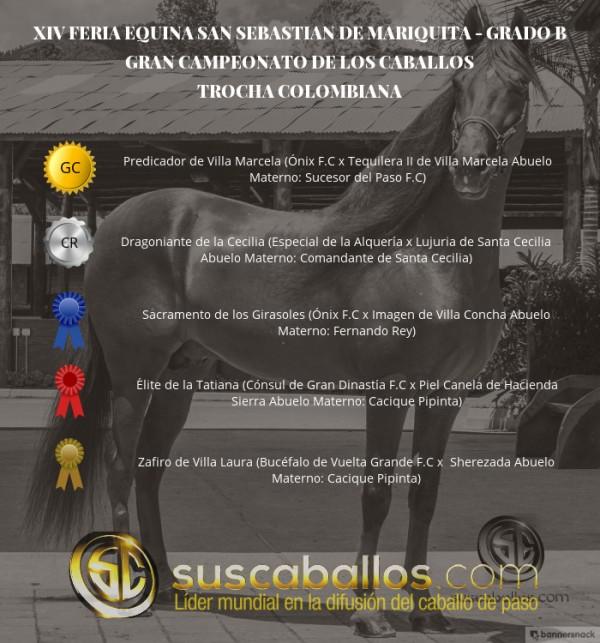 http://suscaballos.com/VÍDEO: Predicador Campeón,Dragoniante Reservado, Trocha, San Sebastián De Mariq
