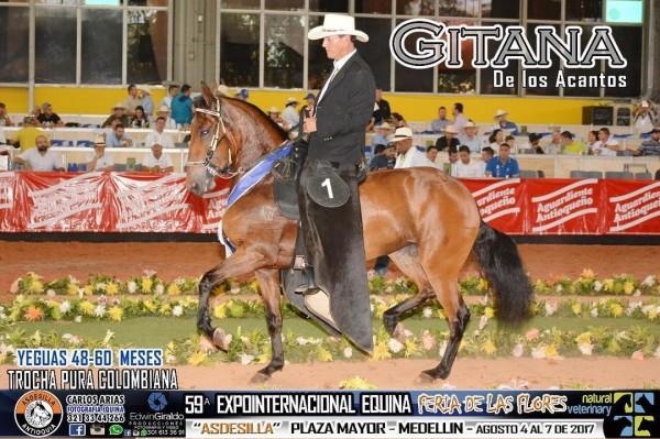 http://suscaballos.com/Feliz Sábado Les Desea GITANA DE LOS ACANTOS