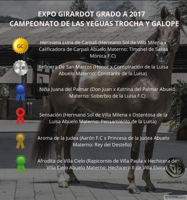 http://suscaballos.com/VÍDEO: Hermana Luna Campeona, Refinera Reservada, Trocha y Galope, Expo Girardot