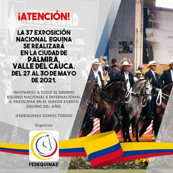 https://suscaballos.com/¡ATENCIÓN! La 37 Exposición Nacional Equina se realizará en la ciudad de Palmira