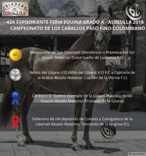 http://www.suscaballos.com/VÍDEO:Memorable Campeón,Relato Reservado, Paso Fino Colombiano, Expooriente 2018