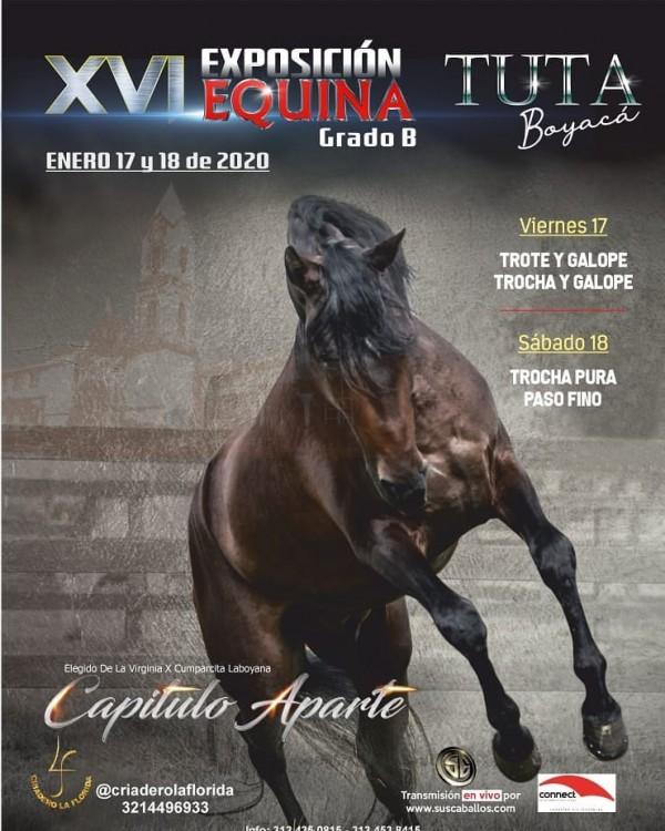 http://suscaballos.com/TRANSMISIÓN XVI Exposición Equina Grado B TUTA - Boyacá, 17 y 18 Enero 2020