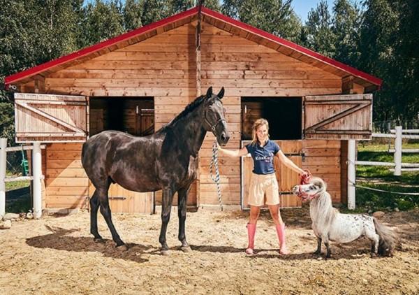 http://suscaballos.com/El caballo más pequeño del mundo