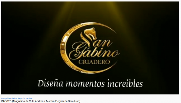 http://www.suscaballos.com/VIDEO: INVICTO  NUEVO INTEGRANTE DE SAN GABINO CRIADERO