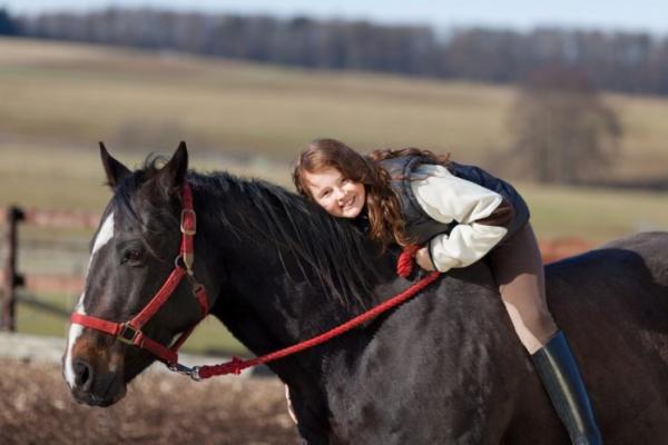 http://www.suscaballos.com/Equitación infantil: Un deporte que estimula mente y cuerpo
