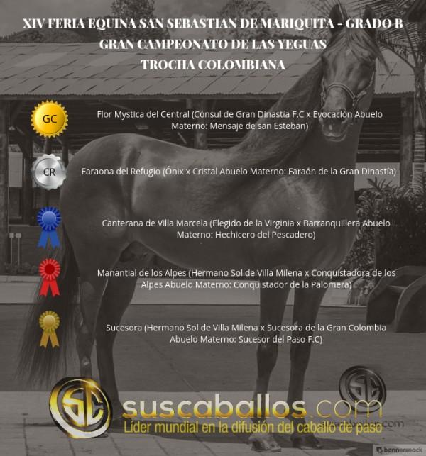 https://suscaballos.com/VÍDEO: Flor GC, Faraona CR, Trocha Colombiana, San Sebastián De Mariquita