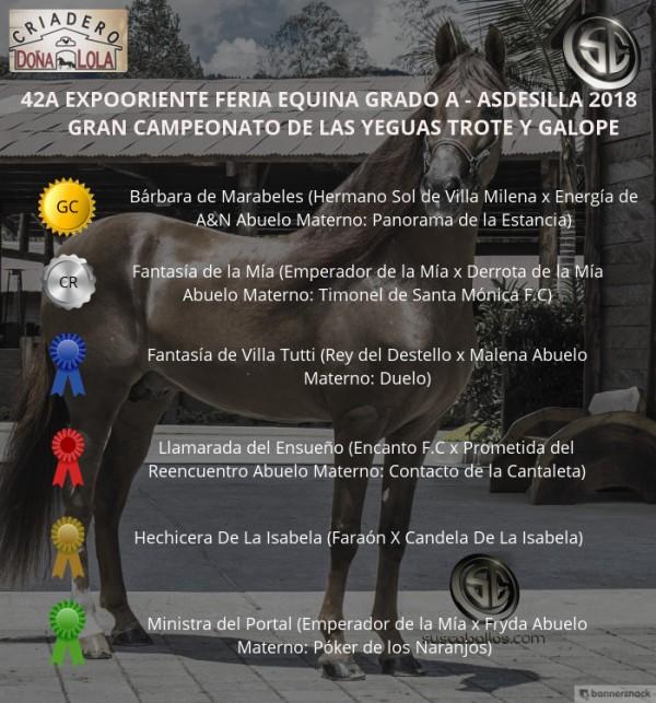 http://www.suscaballos.com/VÍDEO: Bárbara Campeona, Fantasía Reservada, Trote Y Galope, Expooriente 2018