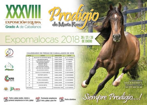 http://www.suscaballos.com/RESULTADOS: XXXVIII Exposición Equina Grado A De Caballanos 2018 - PASO FINO COLOMBIANO