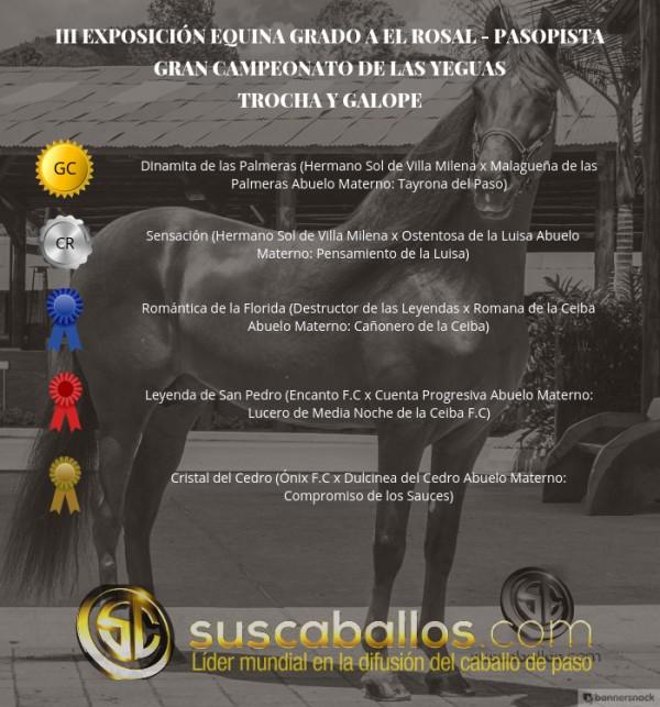 http://suscaballos.com/VÍDEO: Dinamita Campeona, Sensación Reservada, Trocha Y Galope, III Exposabana