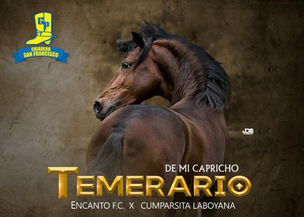 http://suscaballos.com/TEMERARIO DE MI CAPRICHO @temerario_de_mi_capricho