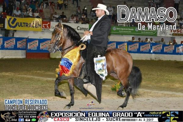 http://www.suscaballos.com/VÍDEO: Damaso De Maryland Campeón Reservado De la Trocha, Sincelejo 2017