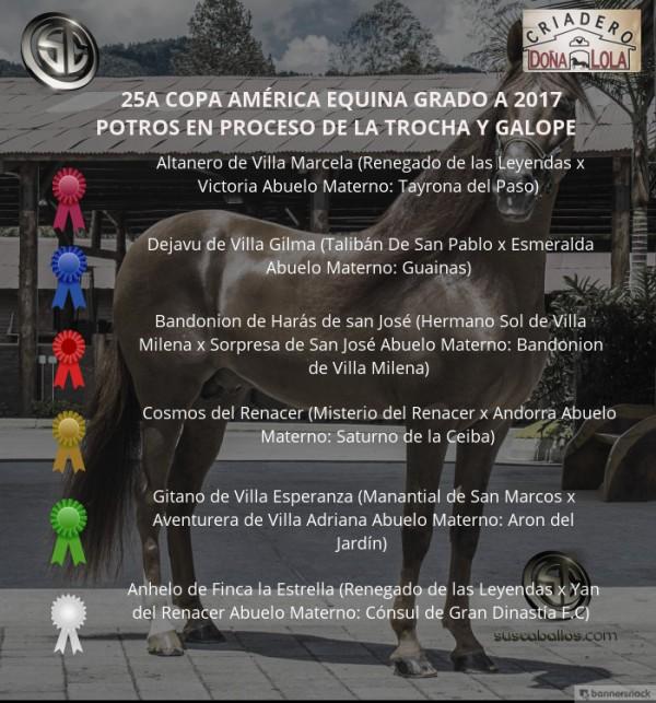 http://www.suscaballos.com/VÍDEO: Altanero Mejor, Dejavu 1P,Potros De La Trocha Y Galope,XXV Copa América