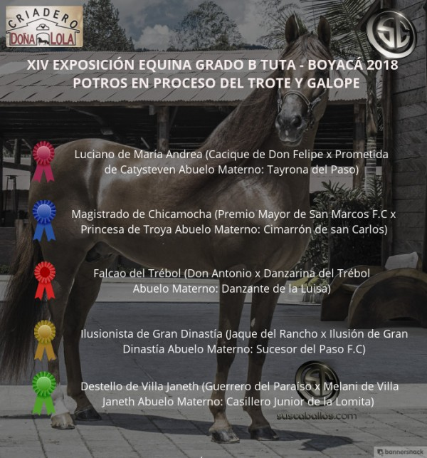 http://www.suscaballos.com/VÍDEO:Luciano Mejor, Magistrado 1P, Potros Del Trote Y Galope, Grado B Tuta 2018