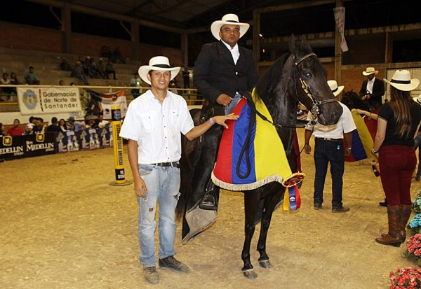 http://suscaballos.com/Bendición Del Silencio Y Diamante de San Pedro, Grandes Campeones Del Paso Fino Colombiano, Cucutá