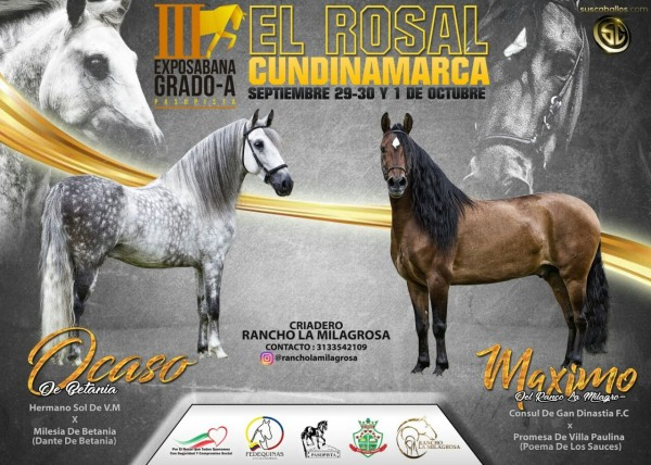http://suscaballos.com/III Exposabana Grado A, El Rosal - Cundinamarca Septiembre 29 -30 y 1 De Octubre
