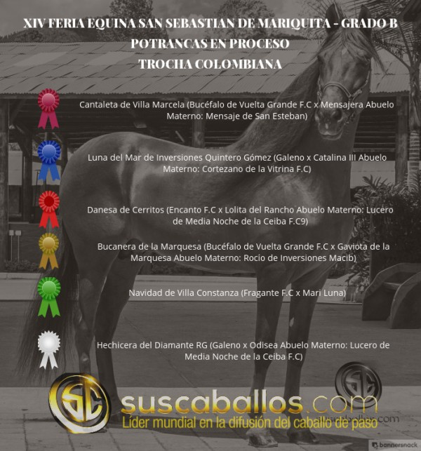 http://suscaballos.com/VÍDEO:Cantaleta Mejor, Luna 1P, Potrancas Trocha,Grado B San Sebastian Mariquita