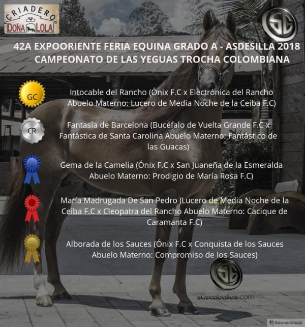 http://www.suscaballos.com/VÍDEO:Intocable Campeona, Fantasía Reservada, Trocha Colombiana,Expooriente 2018
