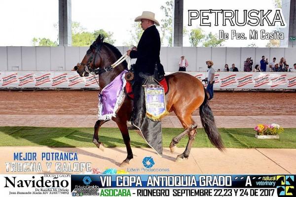 http://suscaballos.com/VÍDEO:Petruska Mejor, Sinfonía 1P,Potrancas Trocha Y Galope,VII Copa Antioquia