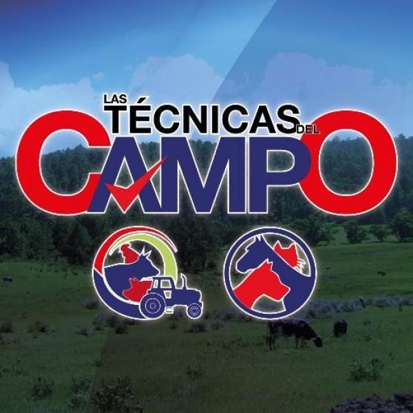 https://suscaballos.com/VÍDEO: Técnicas Del Campo: Conductas Inapropiadas en el Caballo Parte #1