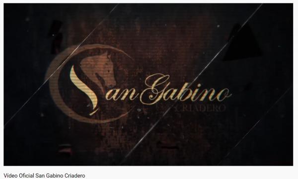 http://suscaballos.com/Video Oficial  San Gabino Criadero