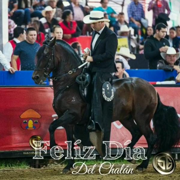 http://suscaballos.com/FELIZ DÍA DEL CHALÁN