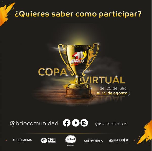 http://www.suscaballos.com/Video: Como participar en la COPA VIRTUAL BRÍO 2020