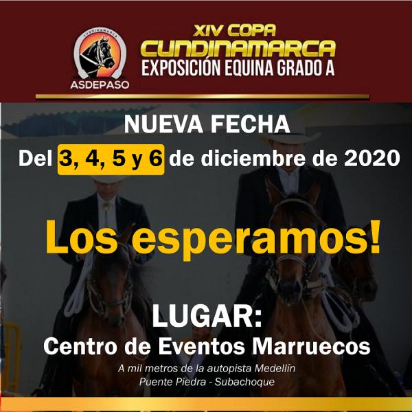 https://suscaballos.com/NUEVA SEDE Y FECHA DE LA COPA CUNDINAMARCA 2020