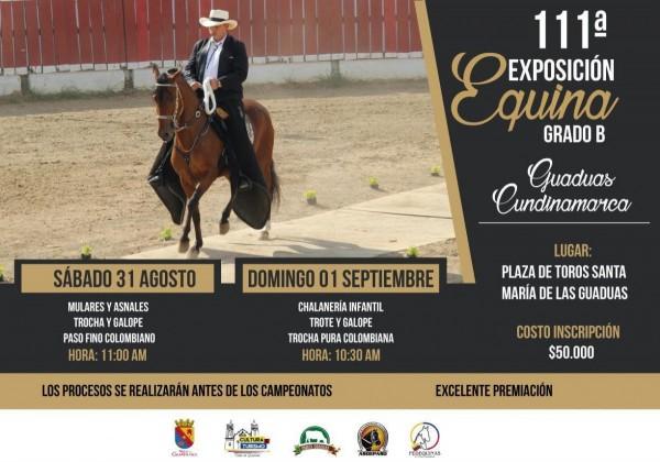 http://suscaballos.com/111a. Exposición Equina Grado B del municipio de GUADUAS, 31 de Agost, 1er Sept