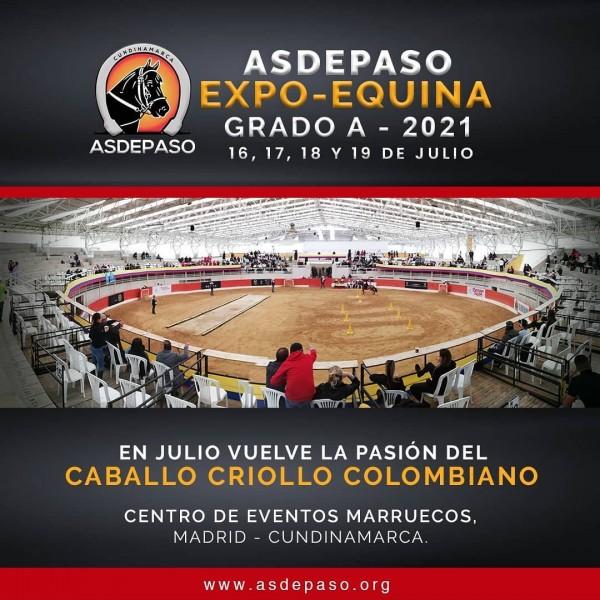 https://suscaballos.com/ASDEPASO EXPO-EQUINA GRADO A - 2021