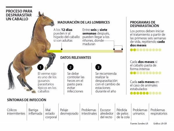 http://www.suscaballos.com/RECOMENDACIONES PARA DESPARASITAR A SUS CABALLOS DE LA FORMA MÁS APROPIADA
