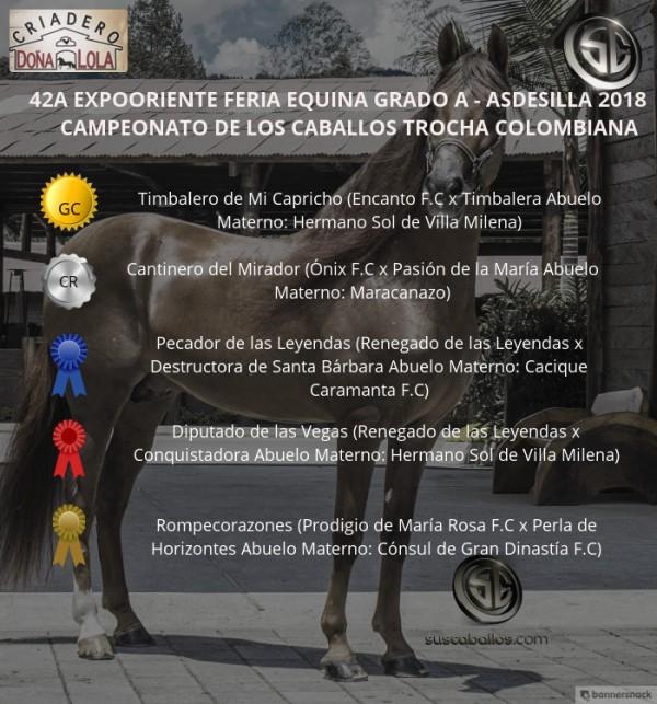 http://www.suscaballos.com/VÍDEO: Timbalero Campeón, Cantinero Reservado, Trocha Colombiana, Expooriente