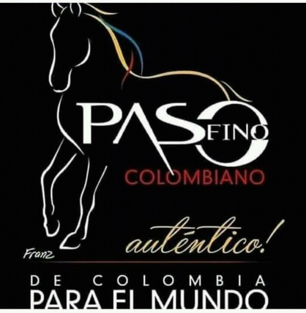 http://suscaballos.com/Historia del caballo criollo colombiano
