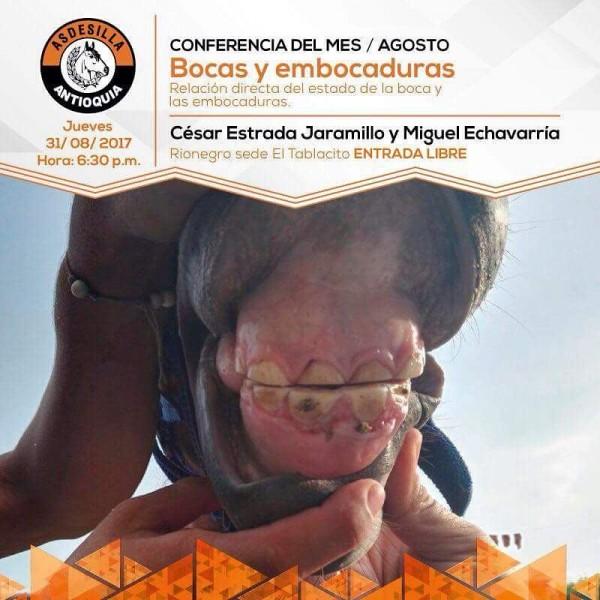 http://www.suscaballos.com/Conferencia Mes De Agosto: Bocas Y Embocaduras