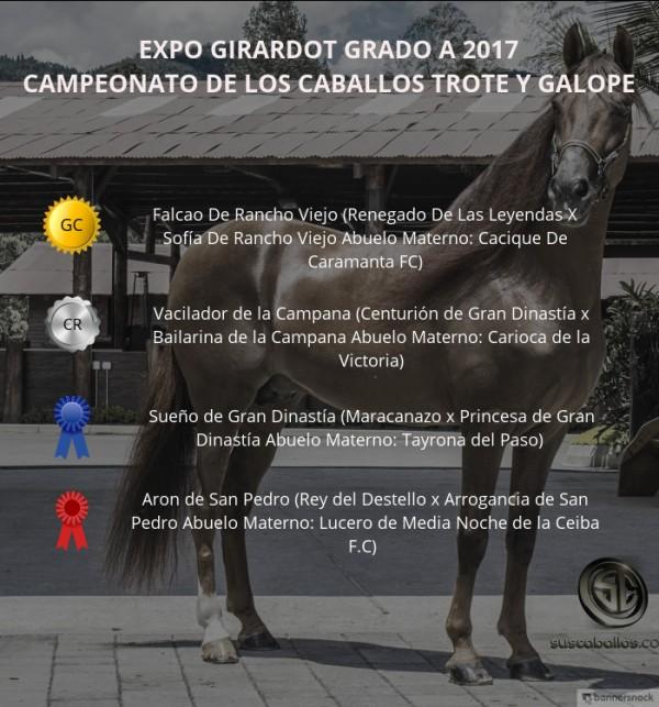 http://suscaballos.com/VÍDEO: Falcao Campeón, Vacilador Reservado, Trote Y Galope, Expo Girardot 2017
