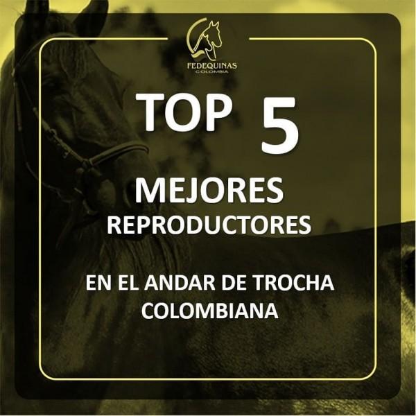 http://suscaballos.com/Top 5 mejores reproductores y reproductoras en el andar de Trocha Colombiana