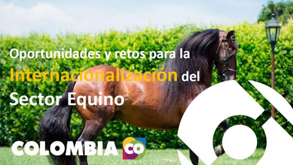 http://www.suscaballos.com/Oportunidades y retos para la Internacionalización del Sector Equino Procolombia