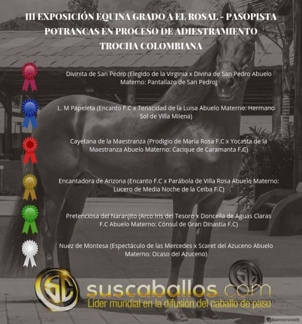 http://suscaballos.com/VÍDEO: Divinita Mejor, L.M Papeleta 1P, Trocha Colombiana, III Exposabana