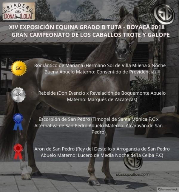http://www.suscaballos.com/VÍDEO: Romántico Campeona, Rebelde Reservado, Trote Y Galope, Grado B Tuta 2018