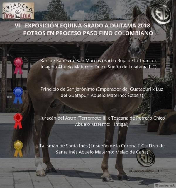 https://suscaballos.com/VÍDEO: Kan De Kanes Mejor, Principio 1er, Potros Paso Fino Colombiano, Duitama