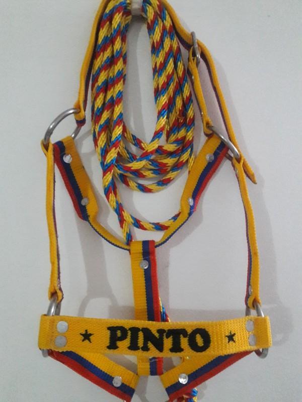 http://www.suscaballos.com/PINTO