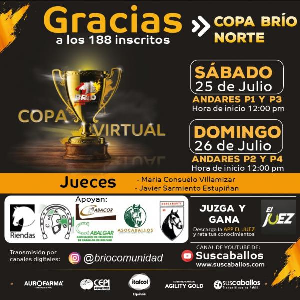 http://www.suscaballos.com/COPA VIRTUAL BRIO NORTE
