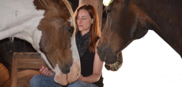 http://suscaballos.com/¿De qué manera los caballos nos conducen a la coherencia cardíaca?