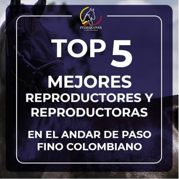 http://suscaballos.com/Top 5 Mejores Reproductores y Reproductoras Paso Fino Colombiano