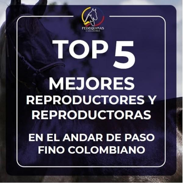 http://www.suscaballos.com/Top 5 Mejores Reproductores y Reproductoras Paso Fino Colombiano