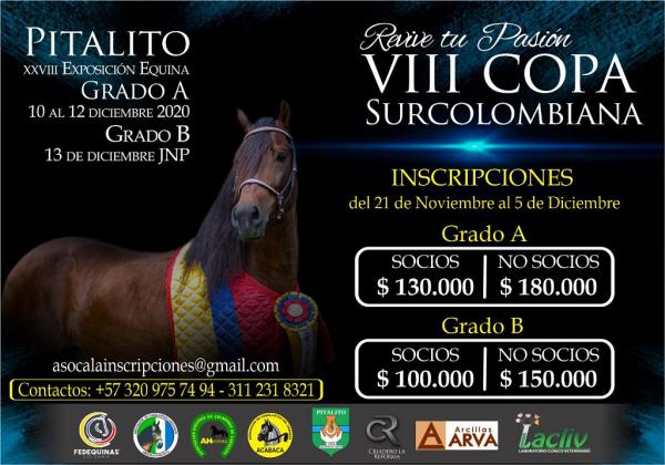 http://suscaballos.com/VIII COPA SURCOLOMBIANA - Pitalito Grado A