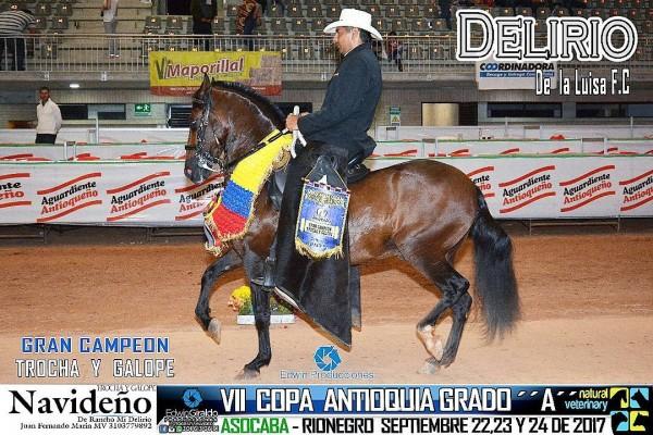 http://suscaballos.com/VÍDEO: Delirio Campeón, Catalán Reservado, Trocha Y Galope, VII Copa Antioquia