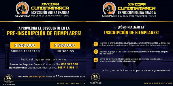 http://suscaballos.com/Exposición Equina Grado A, Copa Cundinamarca Asdepaso 2020