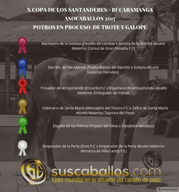 http://suscaballos.com/VÍDEO: Bachatero Mejor, Decreto 1P, Potros de Trote Y Galope, Bucaramanga 2017