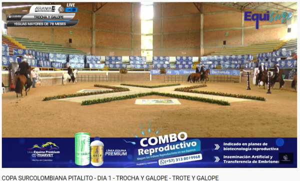 http://suscaballos.com/COPA SURCOLOMBIANA PITALITO - DIA 1 - TROCHA Y GALOPE - TROTE Y GALOPE