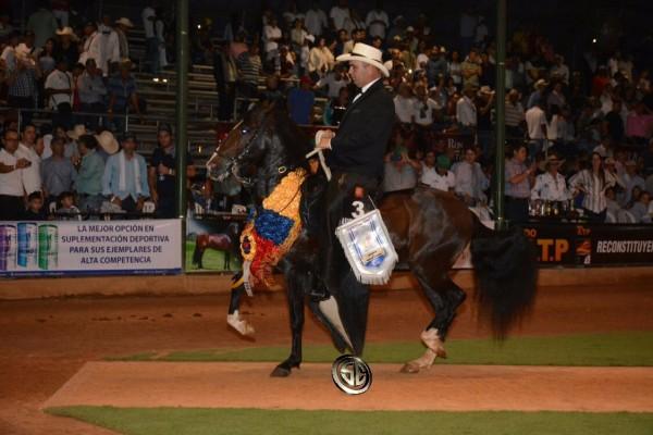 http://www.suscaballos.com/VÍDEO: Premier Campeón, Rey De Reyes Reservado, Trocha - XXV Copa América Equina